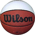 Wilson White Panel Mini Basketball