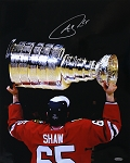Andrew Shaw Autographed Chicago Blackhawks 2015 Stanley Cup 16x20 Photo