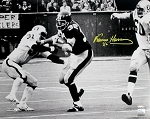 Franco Harris Autographed Pittsburgh Steelers 16x20 Photo