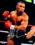 Mike Tyson Autographed Boxing Action 8x10 Photo