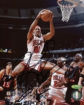 Dennis Rodman Autographed Chicago Bulls Mid Air 8x10 Photo