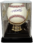 Gold Glove Baseball Display Case