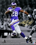 Adrian Peterson Autographed Minnesota Vikings 16x20 Photo