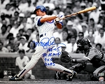 Ryne Sandberg Autographed Chicago Cubs 16x20 Photo Inscribed NL MVP, HOF, GG, AS