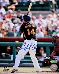 Casey McGehee Autographed San Francisco Giants 8x10 Photo